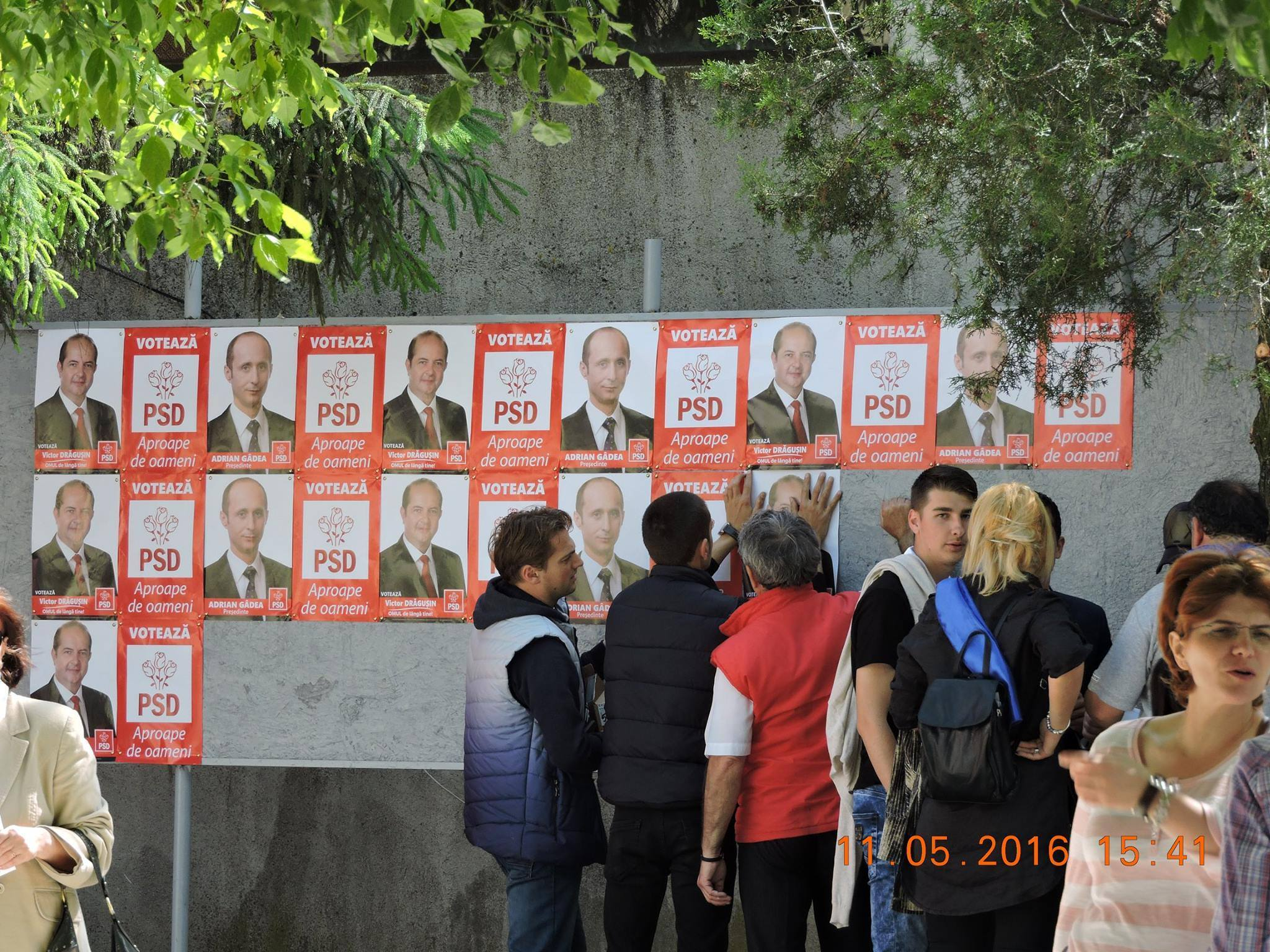 Ca întotdeauna, PSD-ul sfidează legea, lipindu-şi, în multe exemplare, moacele pe tablourile electorale