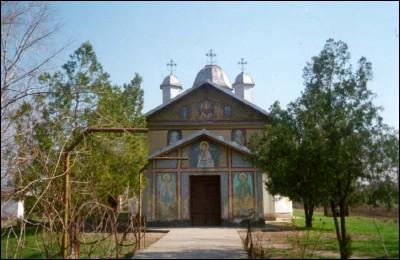 INCIDENT la parastasul mamei vicarului Nicu Chiriță. Un cetățean, bătut de un preot, a vrut să vorbească cu Preafințitul Galaction