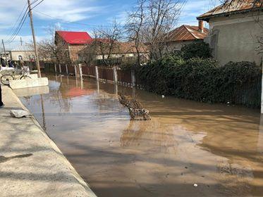 Apele bat în retragere, în Teleorman! Doar în patru localități mai sunt probleme din cauza inundațiilor