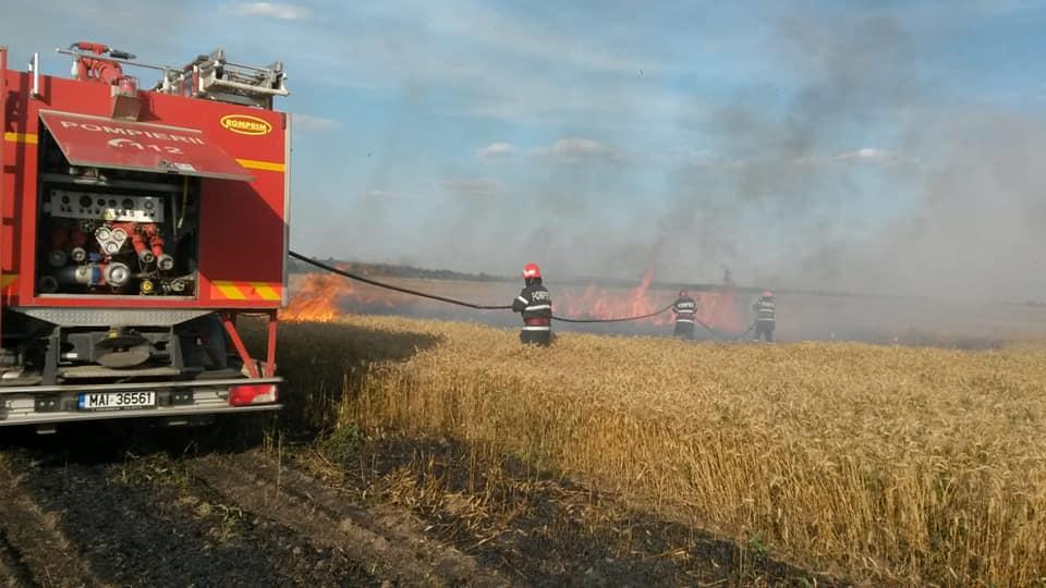 La Segarcea Vale, lan de grâu distrus de foc, din cauza scânteilor mecanice provenite de la o combină agricolă