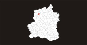 Nepăsarea poate ucide! Primarul din Beuca, Cristea Berechet, face pe prostul și nu știe de prezența virusului WEST NILE în localitate