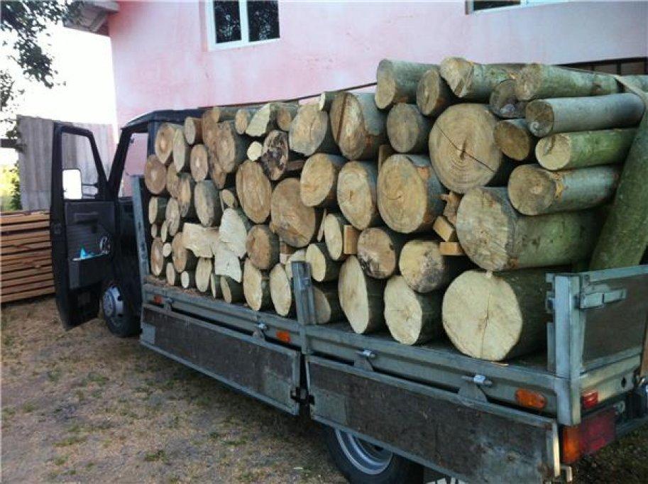 Transport de material lemnos cu acte false. Un tânăr de 20 de ani s-a ales cu dosar penal