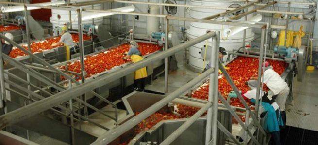 Legea cooperaţiei agricole a fost modificată. Beneficii majore pentru teleormănenii care proceseaza produsele agricole